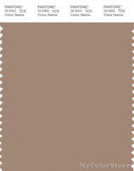 PANTONE SMART 16-1414X Color Swatch Card, Chanterelle