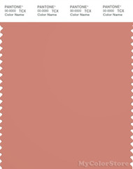 PANTONE SMART 16-1431X Color Swatch Card, Canyon Clay