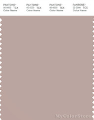 PANTONE SMART 16-1509X Color Swatch Card, Shadow Gray
