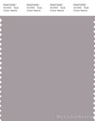 PANTONE SMART 16-3803X Color Swatch Card, Gull Gray
