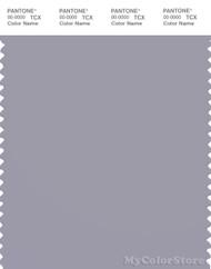 PANTONE SMART 16-3907X Color Swatch Card, Dapple Gray