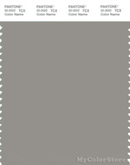 PANTONE SMART 16-4400X Color Swatch Card, Mourning Dove