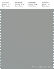 PANTONE SMART 16-4702X Color Swatch Card, Limestone