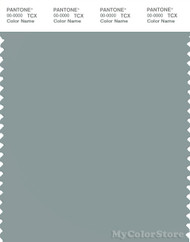 PANTONE SMART 16-4706X Color Swatch Card, Silver Blue