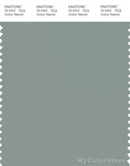 PANTONE SMART 16-5804X Color Swatch Card, Slate Gray
