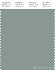 PANTONE SMART 16-5806X Color Swatch Card, Green Milieu