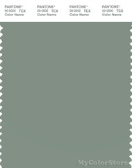 PANTONE SMART 16-5807X Color Swatch Card, Lily Pad