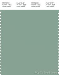 PANTONE SMART 16-5907X Color Swatch Card, Granite Green