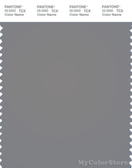PANTONE SMART 17-0000X Color Swatch Card, Frost Gray