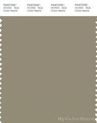 PANTONE SMART 17-0510X Color Swatch Card, Silver Sage