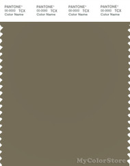 PANTONE SMART 17-0517X Color Swatch Card, Dusky Green