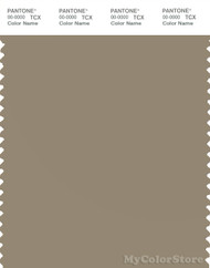 PANTONE SMART 17-1113X Color Swatch Card, Coriander