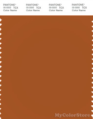 PANTONE SMART 17-1342X Color Swatch Card, Autumnal