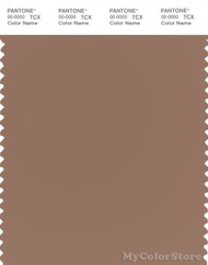 PANTONE SMART 17-1422X Color Swatch Card, Raw Umber