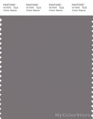 PANTONE SMART 17-1503X Color Swatch Card, Storm Front