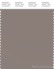 PANTONE SMART 17-1506X Color Swatch Card, Cinder