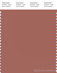 PANTONE SMART 17-1525X Color Swatch Card, Cedar Wood