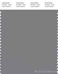 PANTONE SMART 17-3911X Color Swatch Card, Silver Filigree