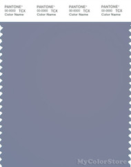 PANTONE SMART 17-3933X Color Swatch Card, Silver Bullet