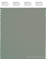 PANTONE SMART 17-6206X Color Swatch Card, Shadow