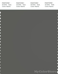 PANTONE SMART 18-0306X Color Swatch Card, Gunmetal