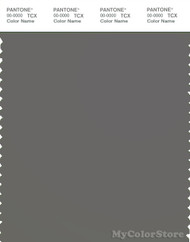 PANTONE SMART 18-0503X Color Swatch Card, Gargoyle
