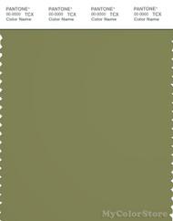 PANTONE SMART 18-0525X Color Swatch Card, Iguana