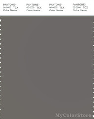 PANTONE SMART 18-0601X Color Swatch Card, Charcoal Gray