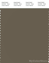 PANTONE SMART 18-0615X Color Swatch Card, Stone Gray