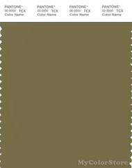 PANTONE SMART 18-0622X Color Swatch Card, Olive Drab