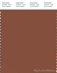 PANTONE SMART 18-1242X Color Swatch Card, Brown Patina