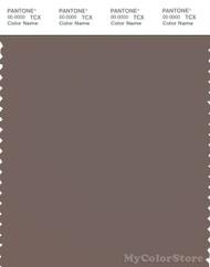 PANTONE SMART 18-1306X Color Swatch Card, Iron
