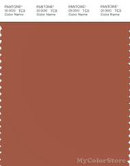 PANTONE SMART 18-1343X Color Swatch Card, Auburn