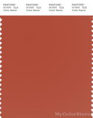 PANTONE SMART 18-1355X Color Swatch Card, Rooibos Tea