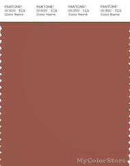 PANTONE SMART 18-1433X Color Swatch Card, Chutney