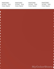 PANTONE SMART 18-1449X Color Swatch Card, Catchup