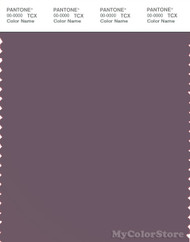 PANTONE SMART 18-1706X Color Swatch Card, Black Plum