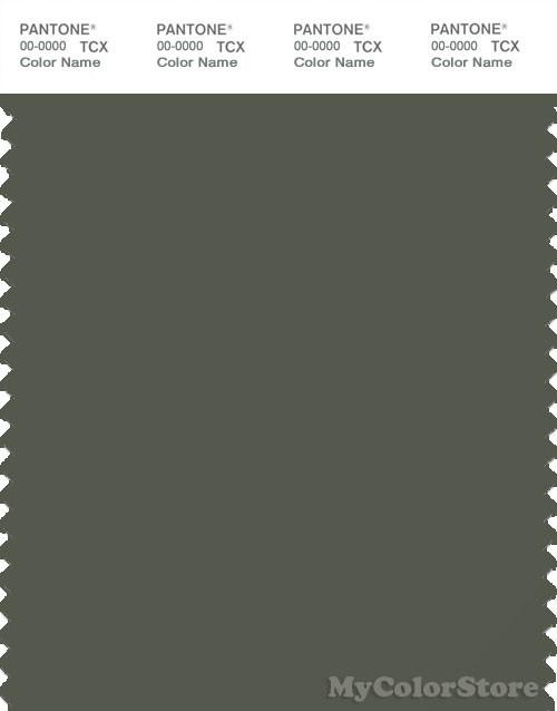 PANTONE SMART 19-0312X Color Swatch Card, Beetle