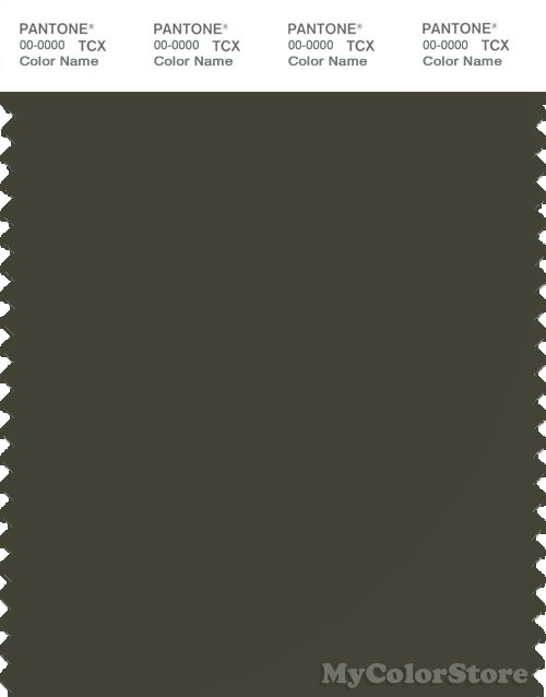 PANTONE SMART 19-0414X Color Swatch Card, Forest Night
