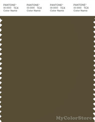 PANTONE SMART 19-0516X Color Swatch Card, Dark Olive