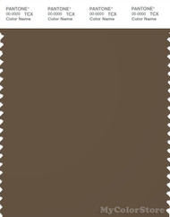 PANTONE SMART 19-0617X Color Swatch Card, Teak