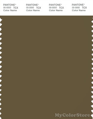 PANTONE SMART 19-0622X Color Swatch Card, Military Olive
