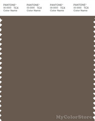 PANTONE SMART 19-0809X Color Swatch Card, Chocolate Chip