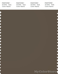 PANTONE SMART 19-0820X Color Swatch Card, Canteen