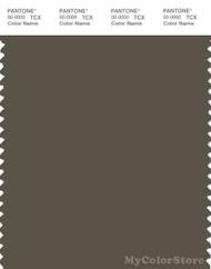 PANTONE SMART 19-0822X Color Swatch Card, Tarmac