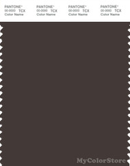 PANTONE SMART 19-0910X Color Swatch Card, Mulch