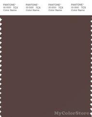 PANTONE SMART 19-1012X Color Swatch Card, Dark Brown