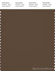 PANTONE SMART 19-1020X Color Swatch Card, Dark Earth
