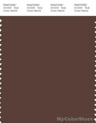 PANTONE SMART 19-1118X Color Swatch Card, Chestnut