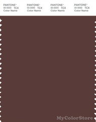 PANTONE SMART 19-1322X Color Swatch Card, Brown Stone